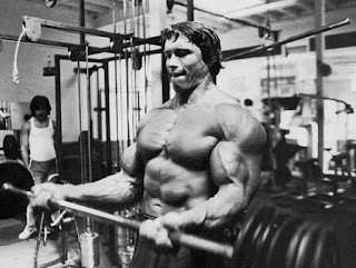 Arnold Schwarzenegger greatest quotes and lifting images