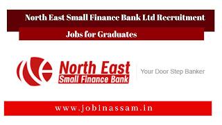 North East Small Finance Bank Ltd