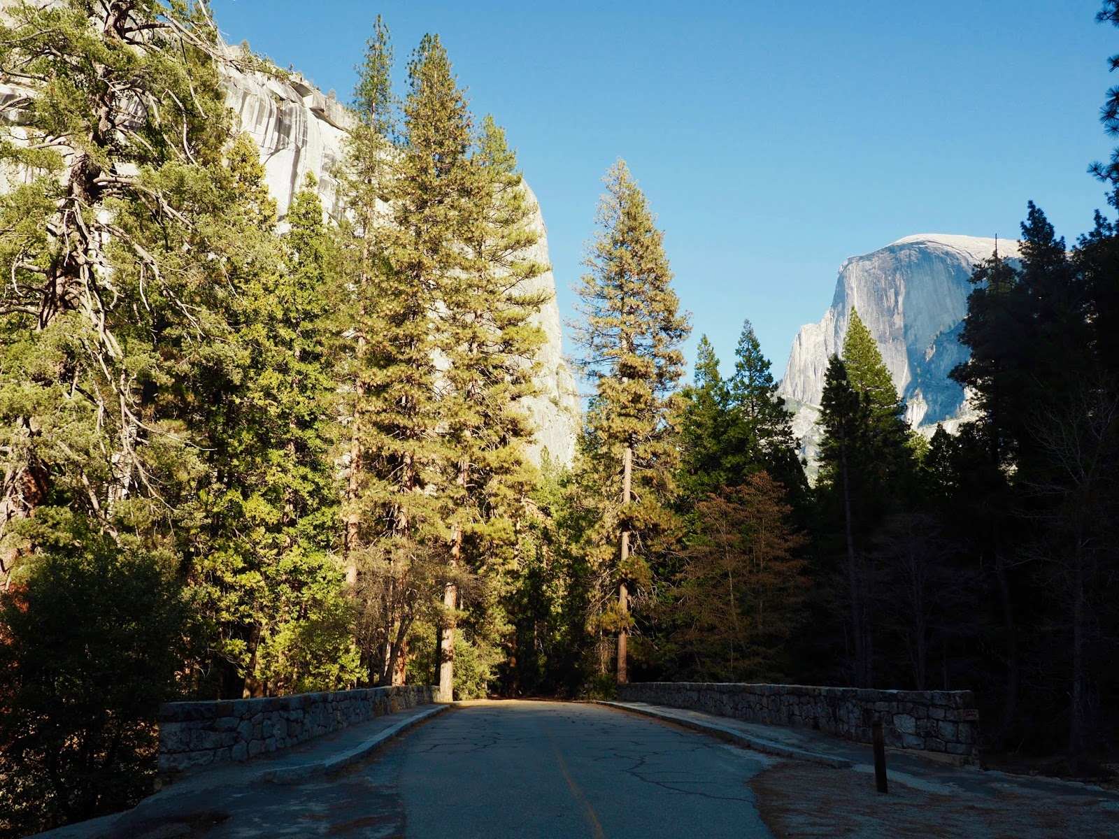 usa america california yosemite national park half dome view scenery travelling holiday tips road trip kirstie pickering blog blogger travel instagram inspo inspiration