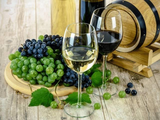 combinações vinhos brancos e tintos