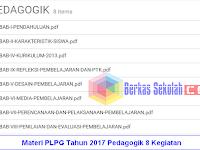 Materi PLPG Tahun 2017 Pedagogik 8 Kegiatan