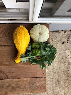 A few squash and some kale on wood step