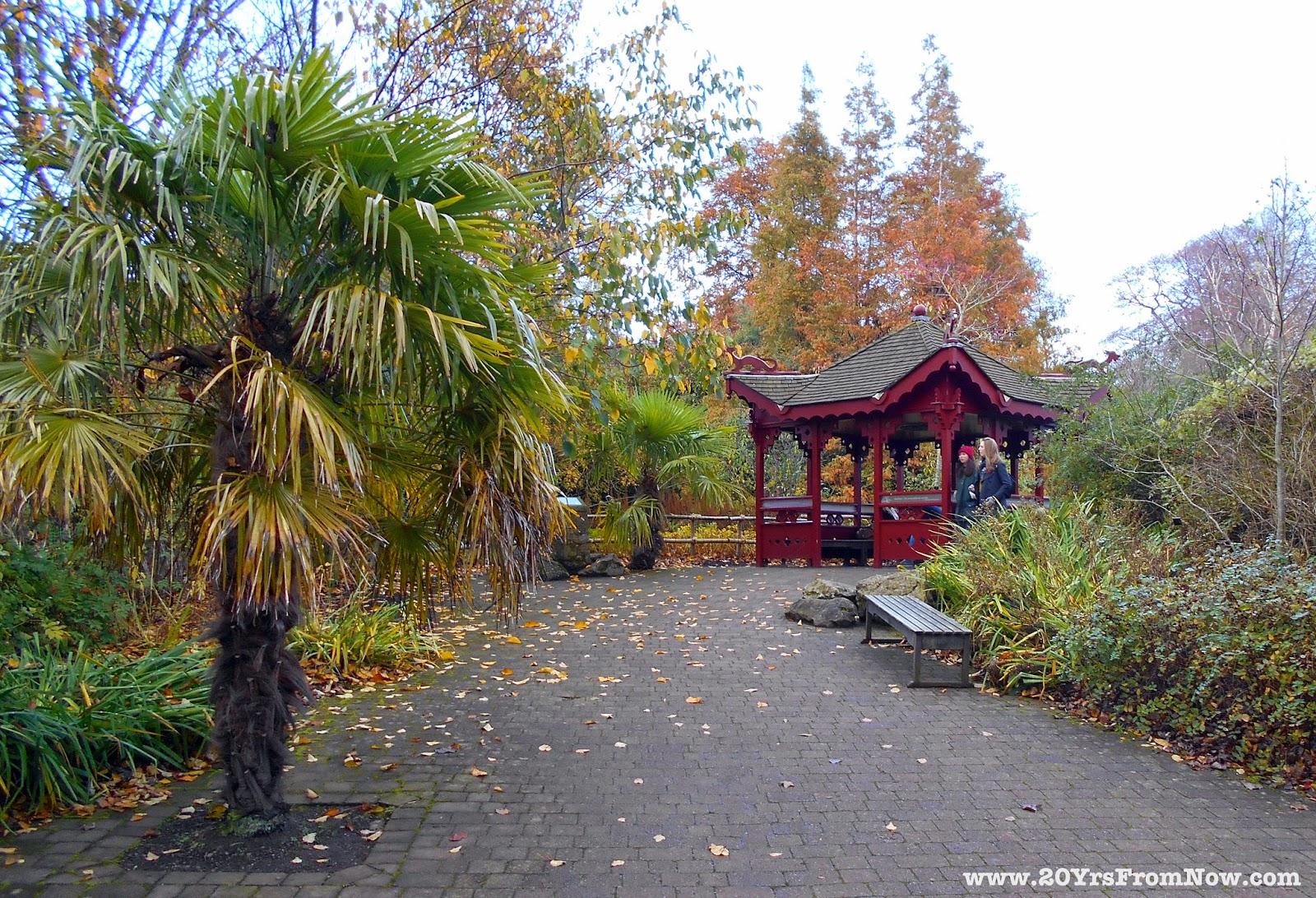 20 Years From Now Royal Botanic Garden Edinburgh