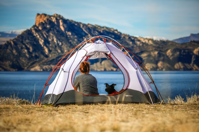 81 Wonderful Camping Blog Names