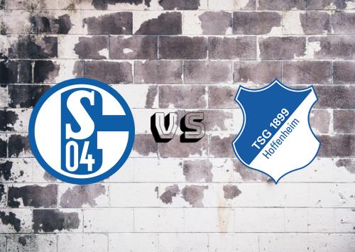 Schalke 04 vs Hoffenheim  Resumen