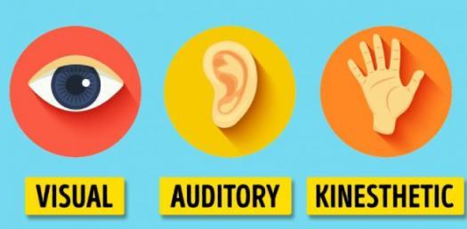 Audio, Visual ,Kinestetik