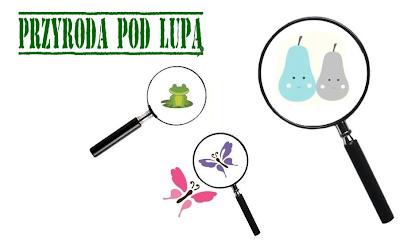 http://www.kreatywnymokiem.pl/2014/06/przyroda-pod-lupa-uczestniczki-projektu.html