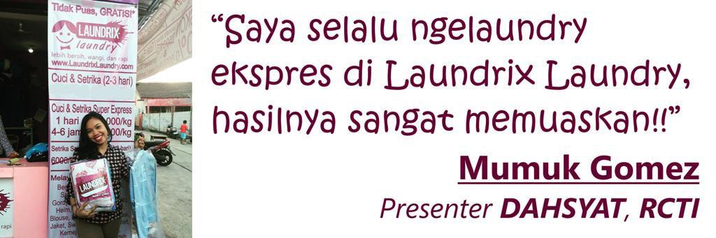 testimonial laundrix laundry