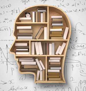 Understanding how the brain processes maths learning