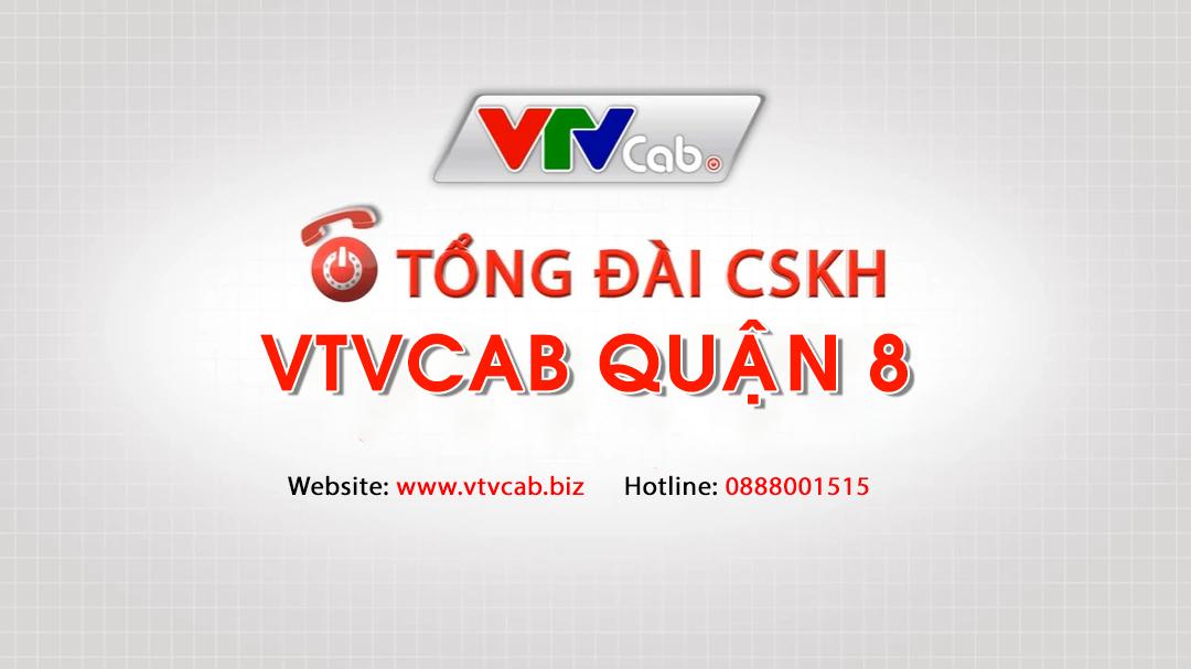 VTVCab Q8