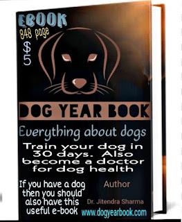 Dag Year Book