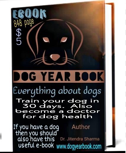 Dog Year Book