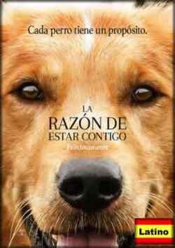 Blu-Ray La razón de estar contigo Español Latino HD