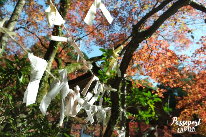 Omikuji au sanctuaire Niiyama de Kunenan, Kanzaki, Saga