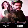 Tere Milne Ki Dair Thi Novel By Bushra Bassar