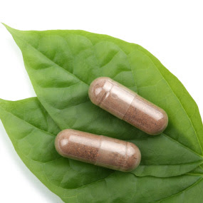 Kandungan Antioksidan dan Katekin dalam Teh Hijau