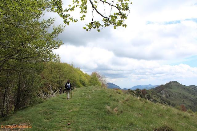 Ruta senderista, Comanegra, Puig de les Bruixes, Girona, Catalunya