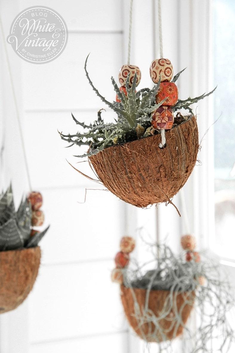 DIY-Anleitung für Blumenampeln aus Kokosnüssen