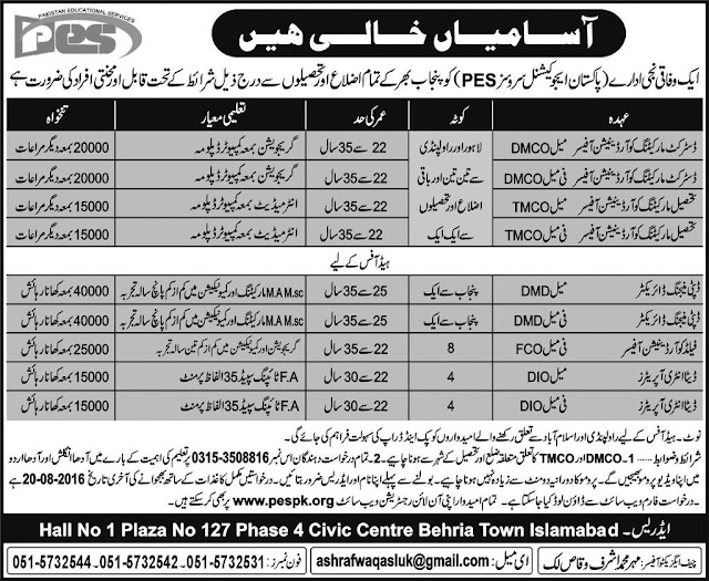Jobs in Pakistan Educational services Jobs in Punjab