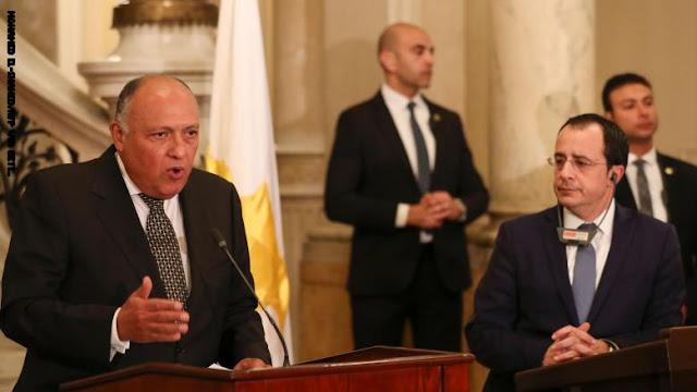 مصر: إرسال قوات تركية إلى ليبيا سيؤثر سلبًا على مؤتمر برلين