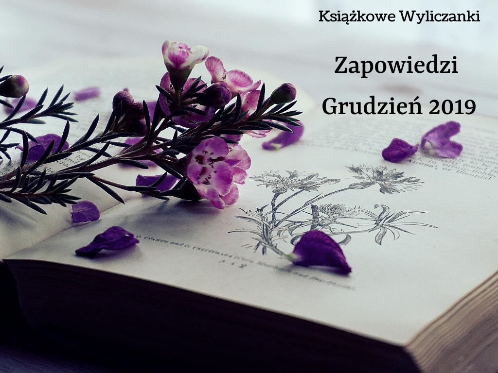 Grudzień w księgarniach, czyli nowości na półkach 12.2019