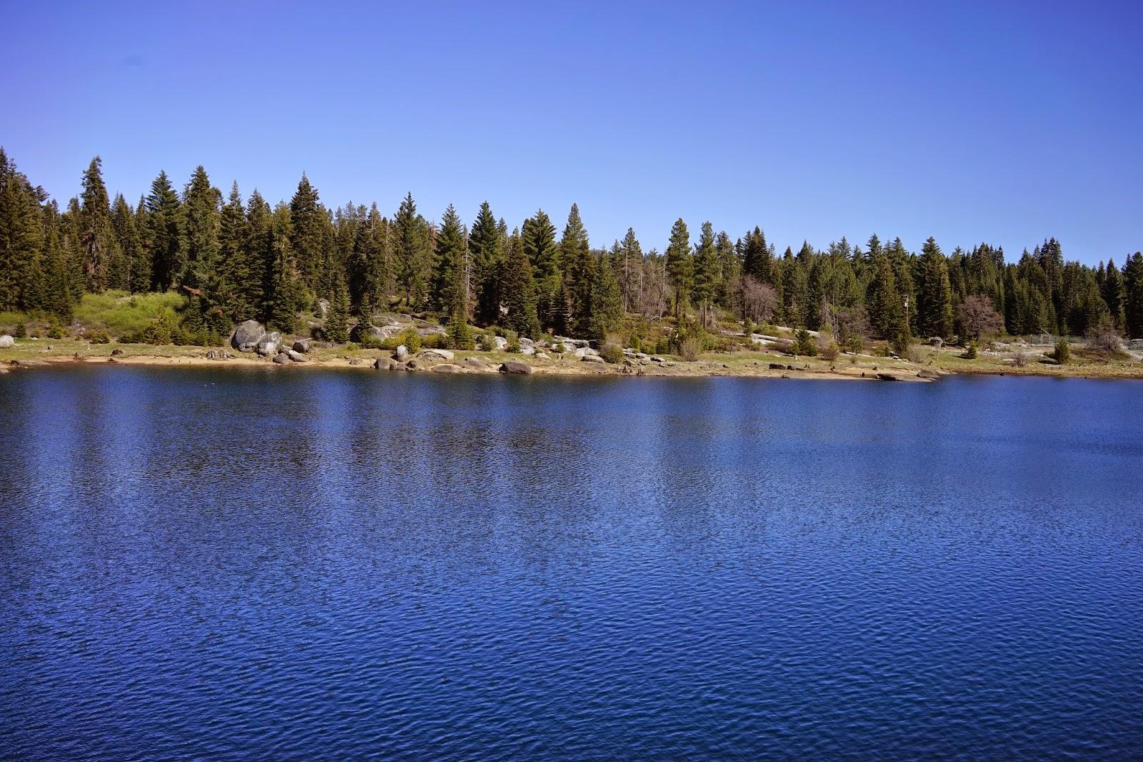 Mid Sierra Musings: Balsam Forebay Shaver Lake CA