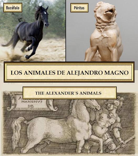El caballo de Alejandro Magno Bucéfalo y el perro de Alejandro Magno Péritas