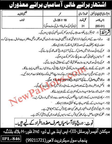 31 Naib Qasid Jobs in Disable Quota in Punjab 30 Jan 2019