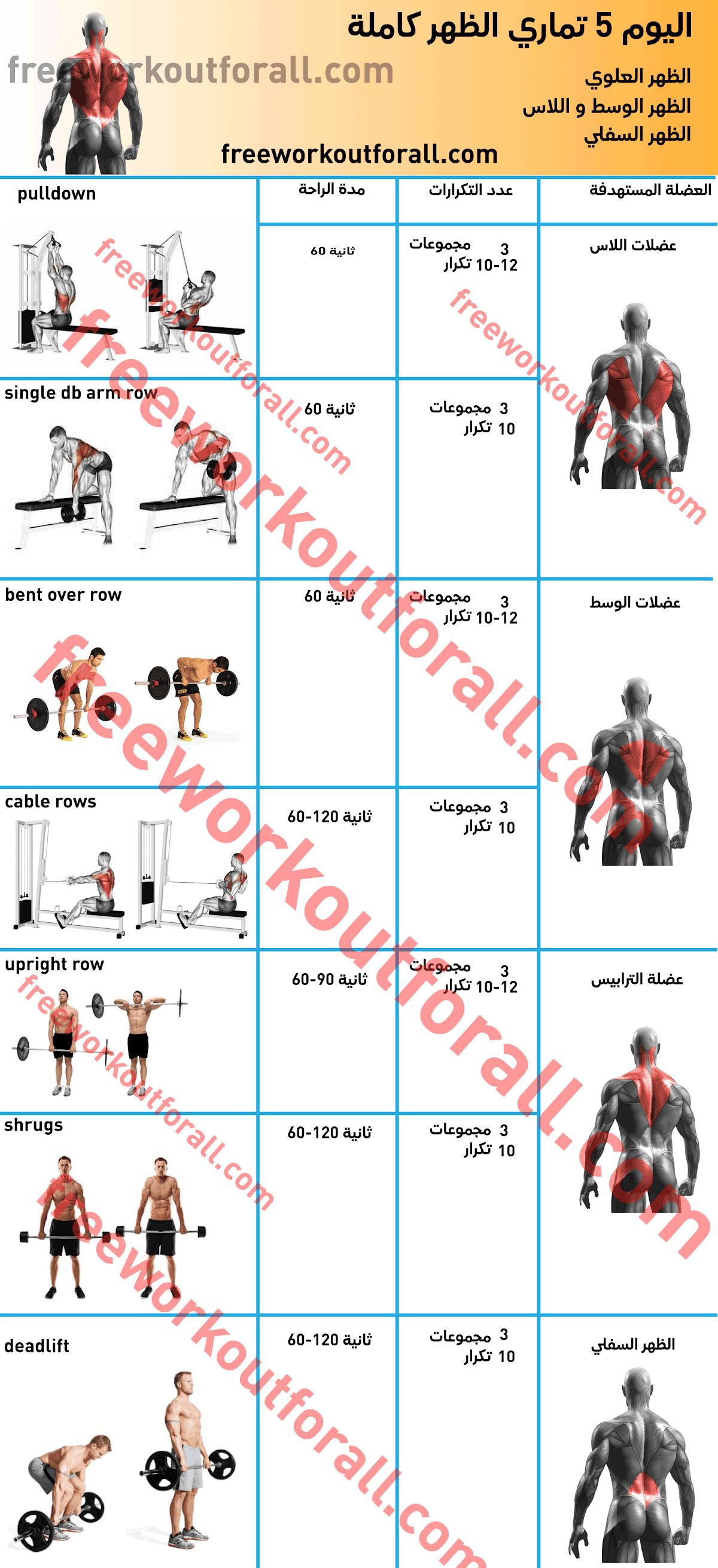 جدول تمارين كمال اجسام 5 ايام