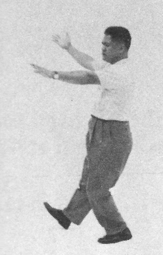 Tai Chi Chuan (Square Form) 72. The Seven Stars Style