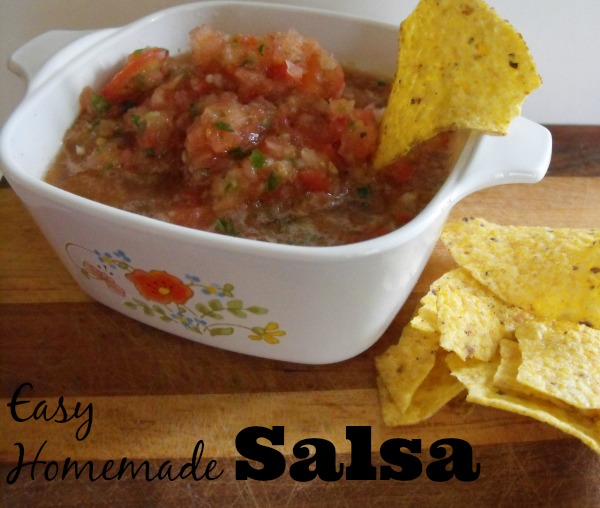 Fresh Ingredient Homemade salsa