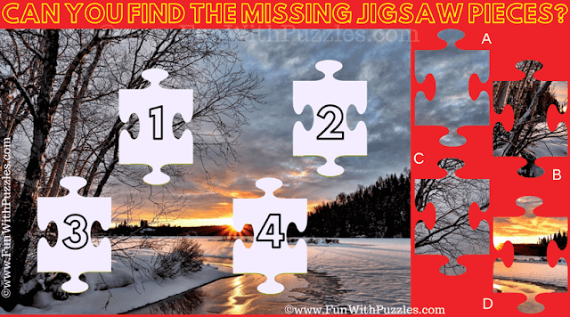 In this Twilight Missing Pieces Jigsaw Puzzle one has to find the missing jigsaw pieces in the puzzle picture
