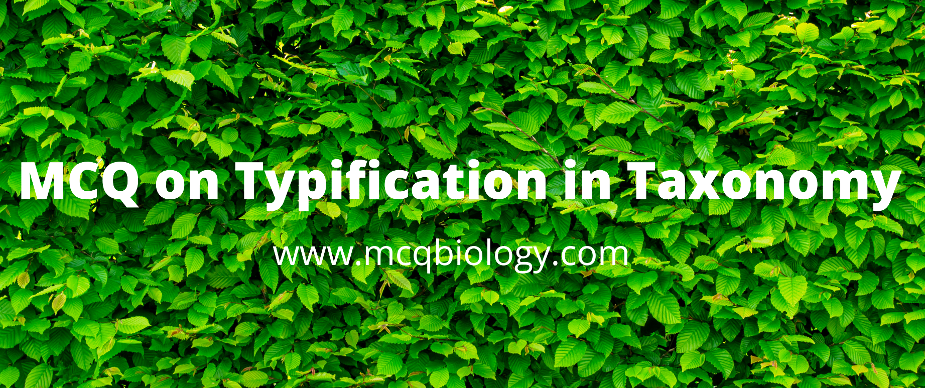 MCQ on Typification in Taxonomy