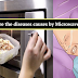 Know These Diseases That All Are Caused by Microwave Ovens, and You've Probably Ignored Them