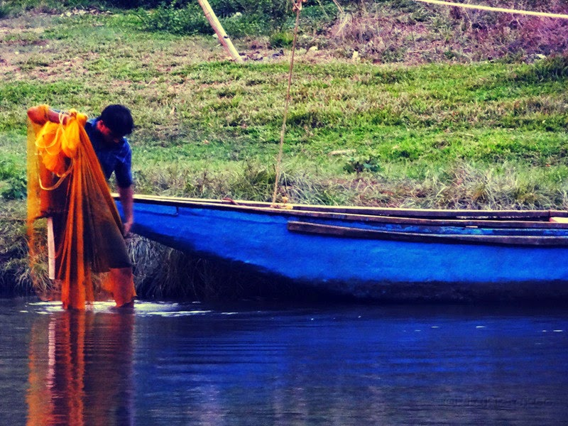 A fisherman at work - Kerala country side