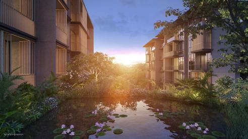 Parc Komo - Lily Pond
