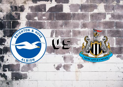 Brighton & Hove Albion vs Newcastle United  Resumen