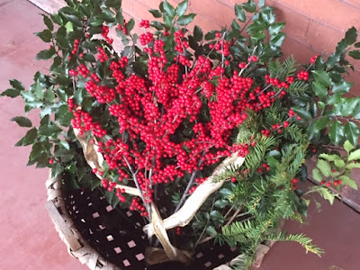 Sprigs of holly, winterberry, pine, and boxwood in a splint basket with a gold ribbon sits on porch