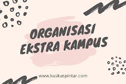Mari Intip Organisasi Ekstra Kampus