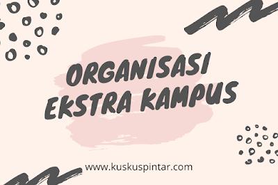 Organisasi Ekstra Kampus