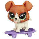 Littlest Pet Shop Pet Tales Buster Boodles (#82) Pet
