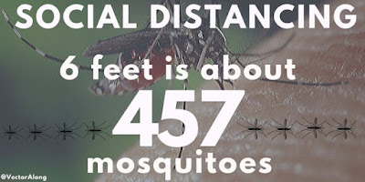 Social distancing: 6 feet is about 457 mosquitoes