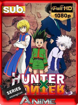 Hunter x Hunter (2011) [015/148] [BDRip] [Subtitulado] [1080p] [GoogleDrive] AioriaHD