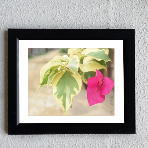 Bougainvillea framed Print Wall Frame, Wall Art in Port Harcourt, Nigeria