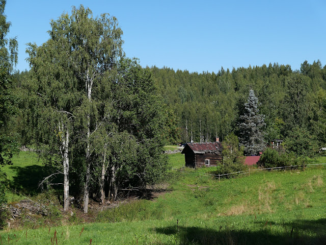 Maisema, jossa on puita, laidun ja puurakennus. Kuvattu kesällä.