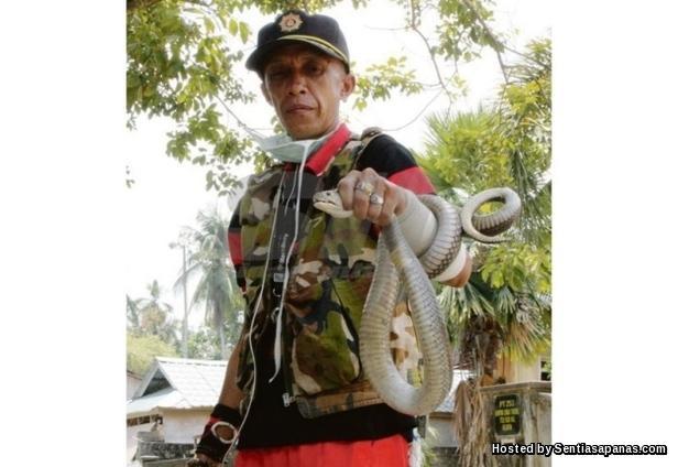 Tengku Razlan Tengku Ismail @ POKKU