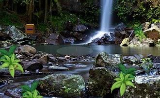 ZooZooGames Escape Waterfalls