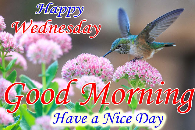 26-12-2018 Good Morning wishes gif Image wallpaper Today