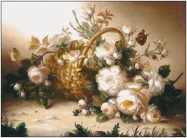 Bagira-Belie rozi-MM