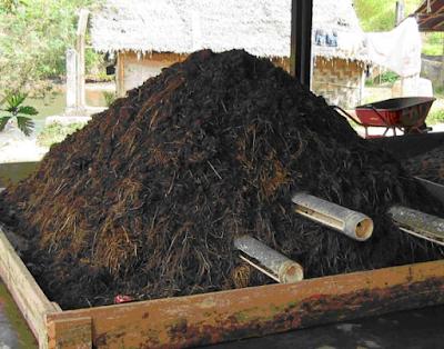 Jenis jenis pupuk kompos